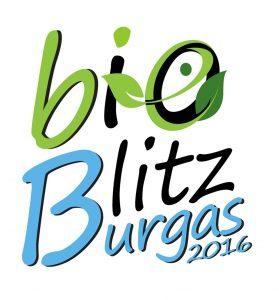 Bio Blitz